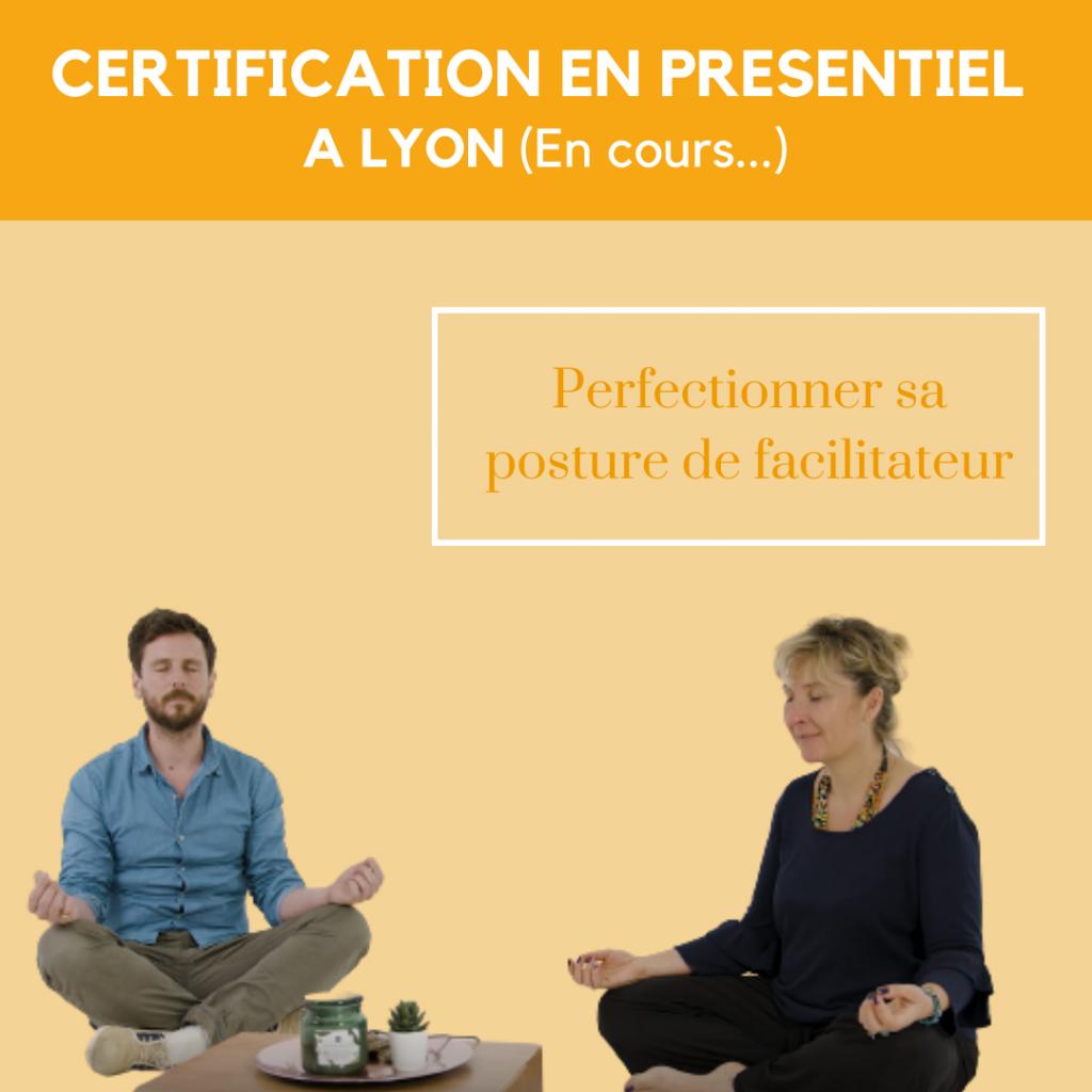 Formation en presentiel posture de facilitateur intelligence collective