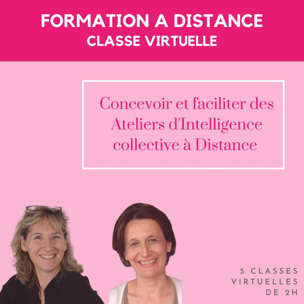 Formation à distance atelier à Lyon intelligence collective